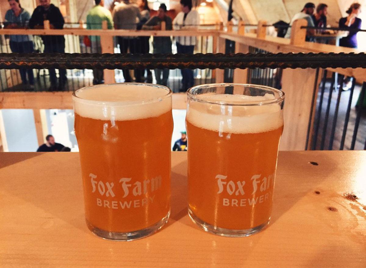 connecticut fox farm brewery