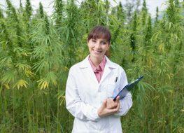 Female doctor with clipboard posing in a hemp field