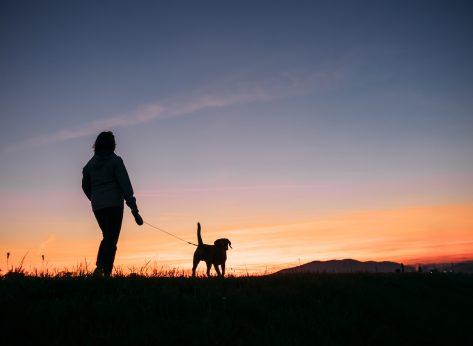 woman-walking-dog-evening-walk-benefits