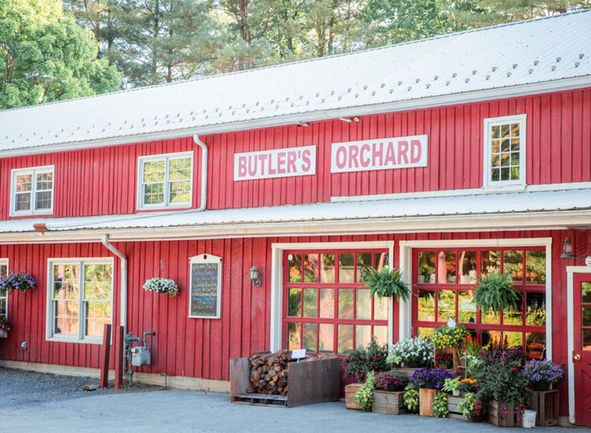 maryland butlers orchard