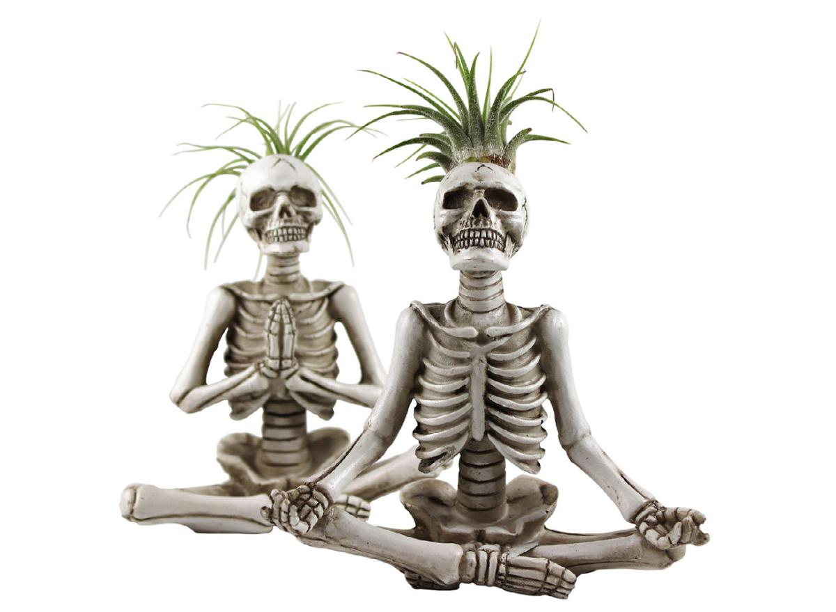 Trader Joe's yoga skeletons