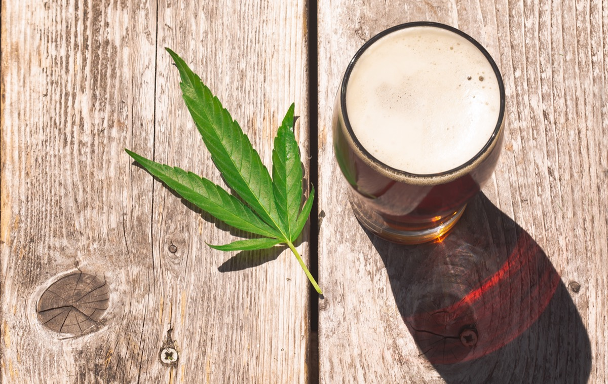 Cannabis beer on a picnic table wood surface.