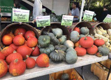 illinois oak park farmers market