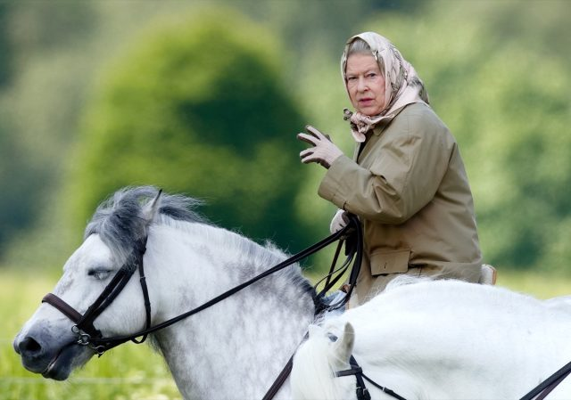 queen elizabeth with her hair in a scarf riding a horse