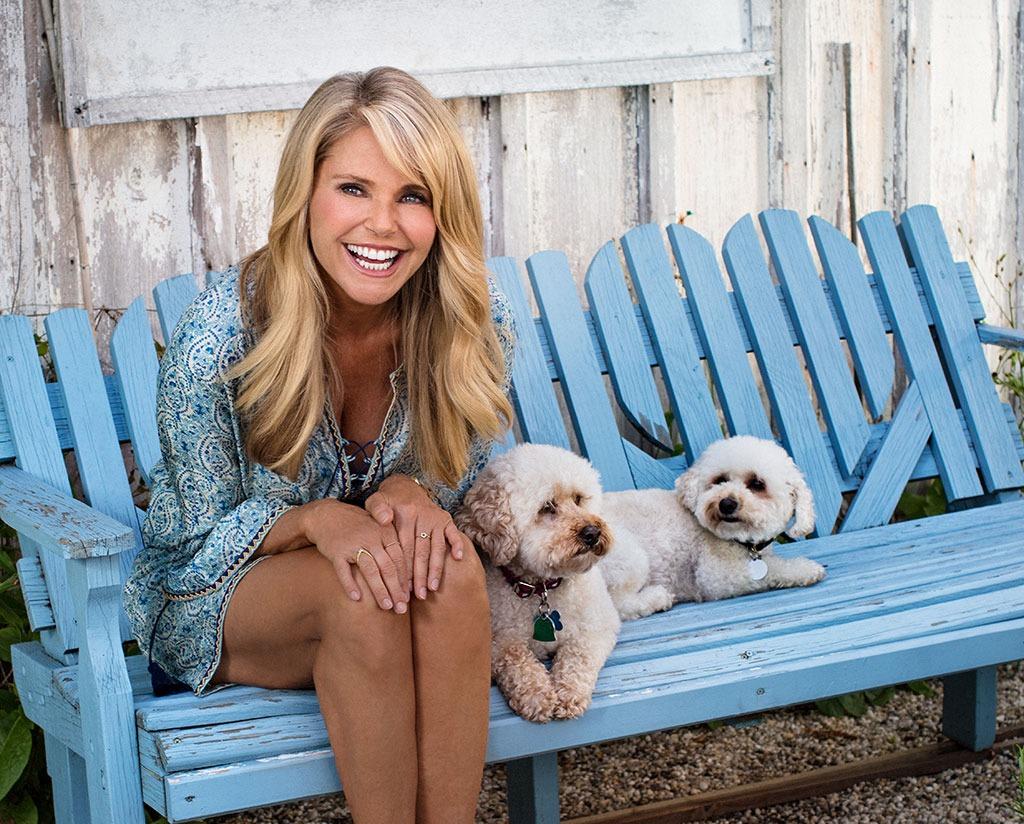 christie brinkley dogs