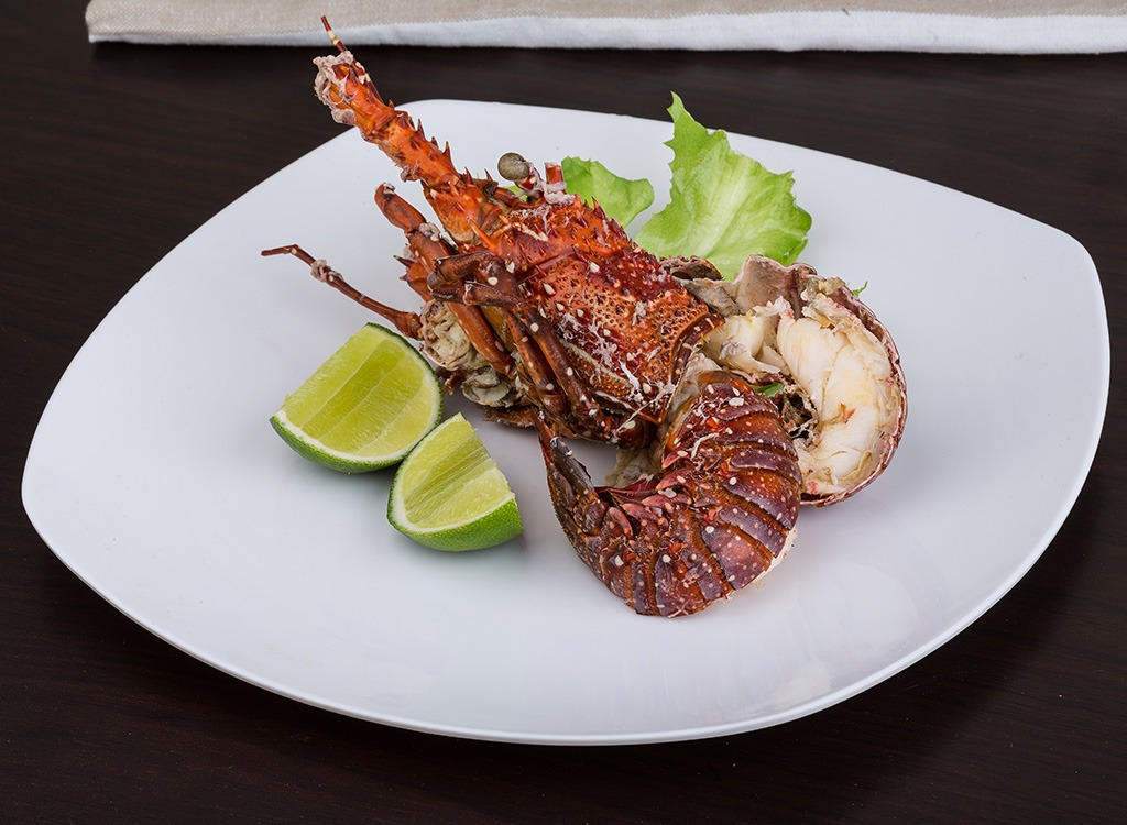 Fish ranked Spiny Lobster
