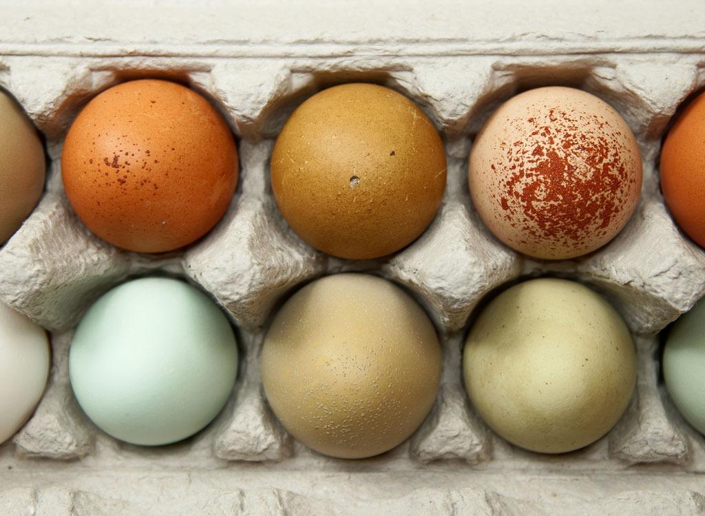 eggs different colors