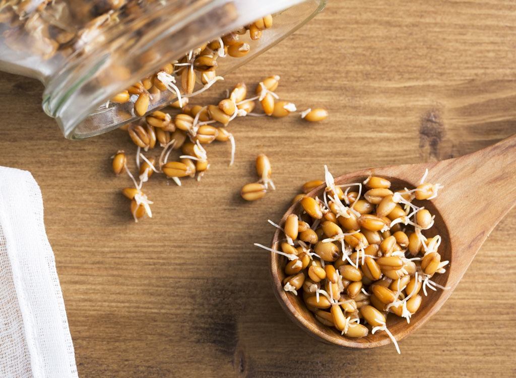 Sprouted food sprouted wheat