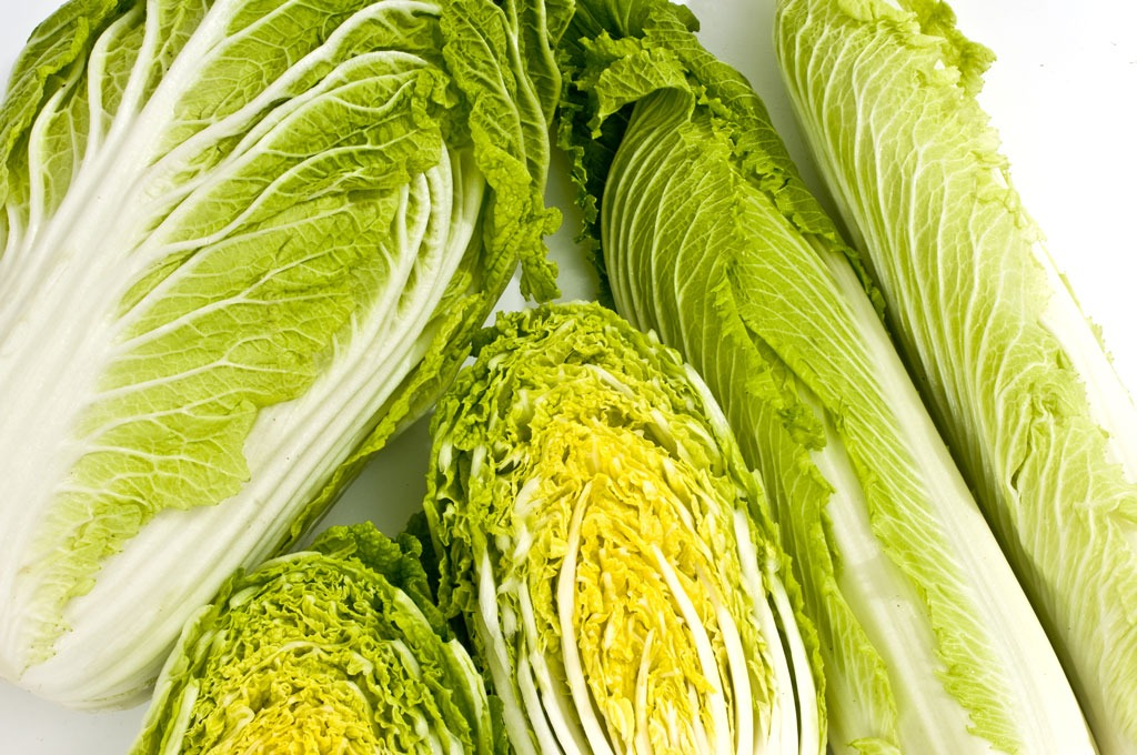 Nappa chinese cabbage