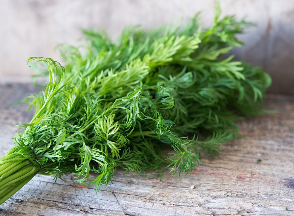 Spring foods fennel