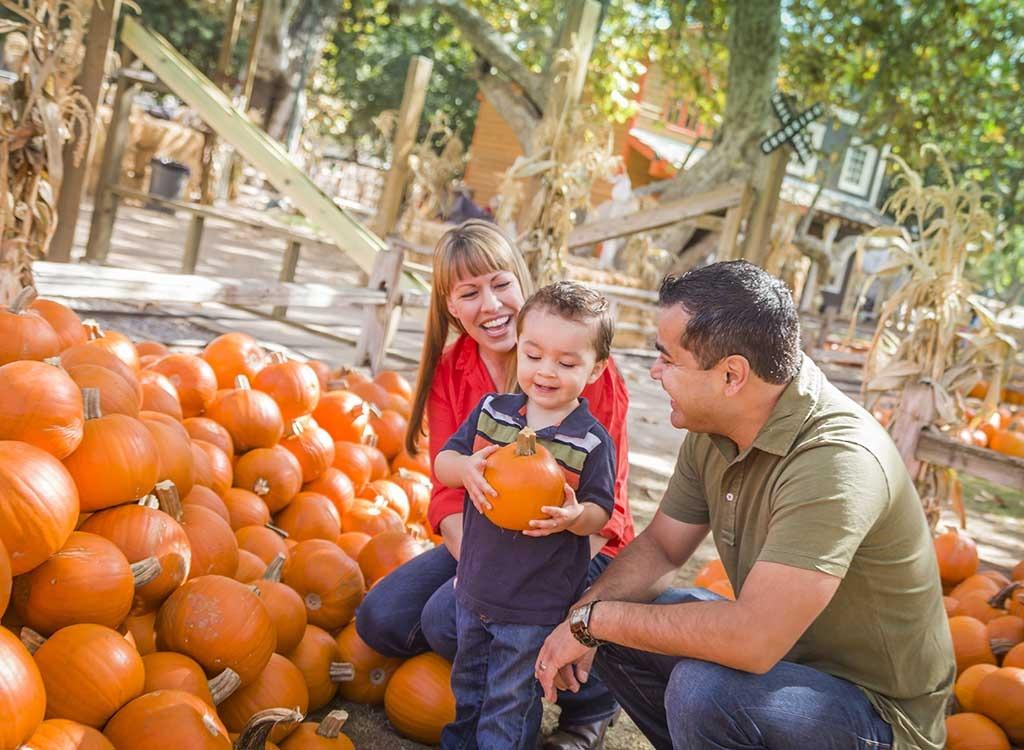 parents with pumpkins
